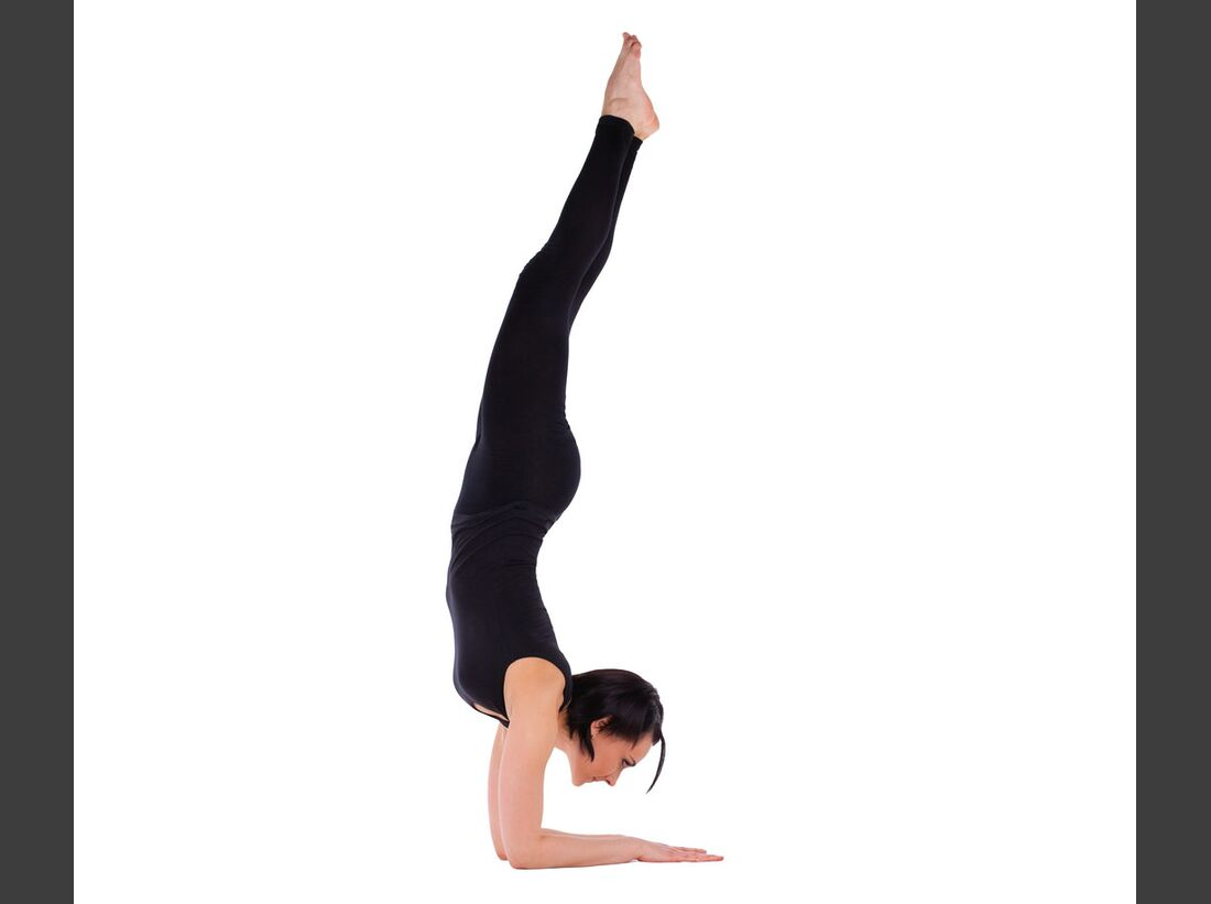 AL-Yoga-Delfin-shutterstock-fuer-burmester-0113-shutterstock_77187103 (jpg)