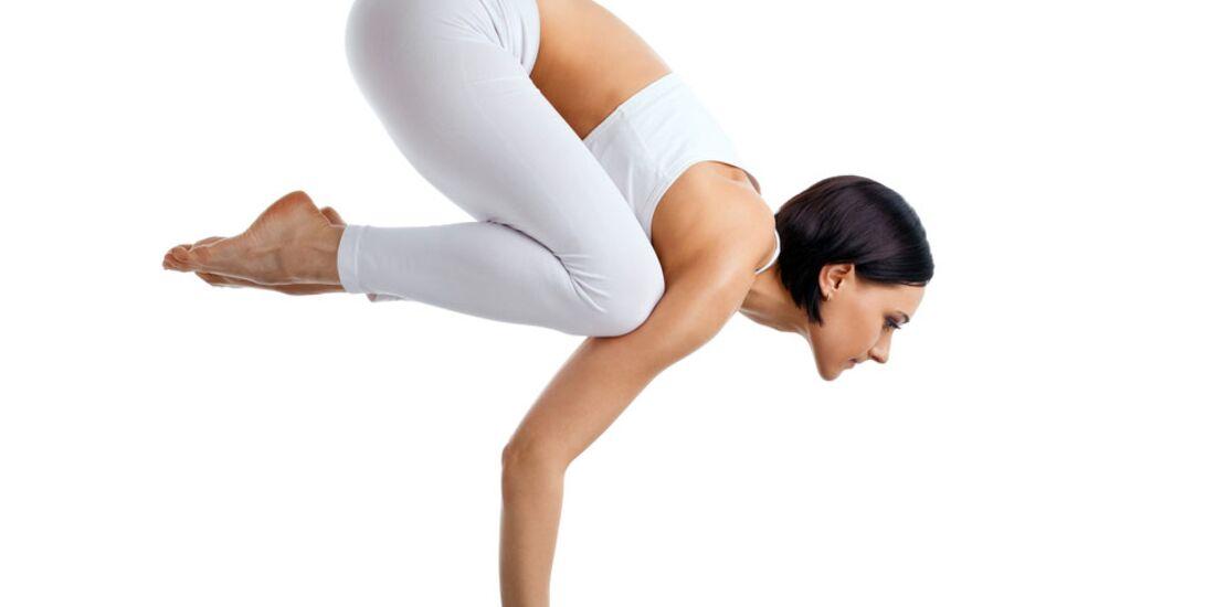 AL-Yoga-Kraehe-shutterstock-fuer-burmester-0113-shutterstock_81765877 (jpg)