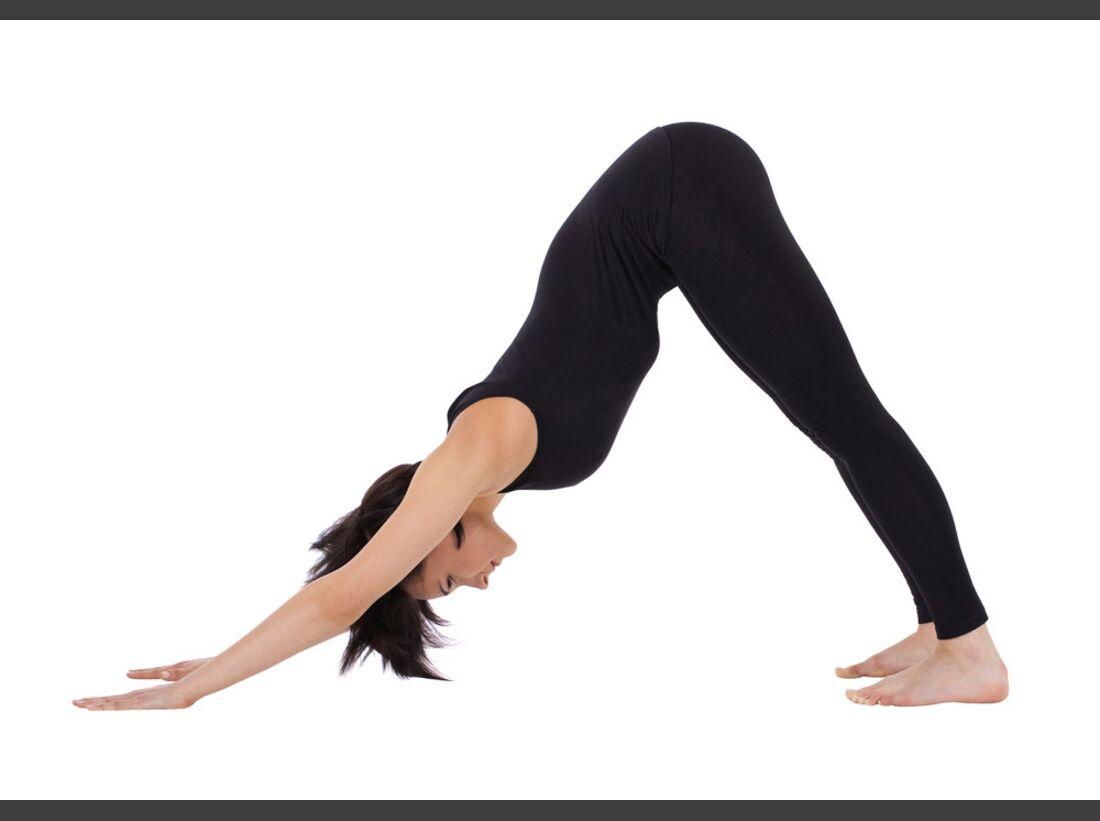 AL-Yoga-hinabschauender-Hund-shutterstock-fuer-burmester-0113-shutterstock_76580296 (jpg)