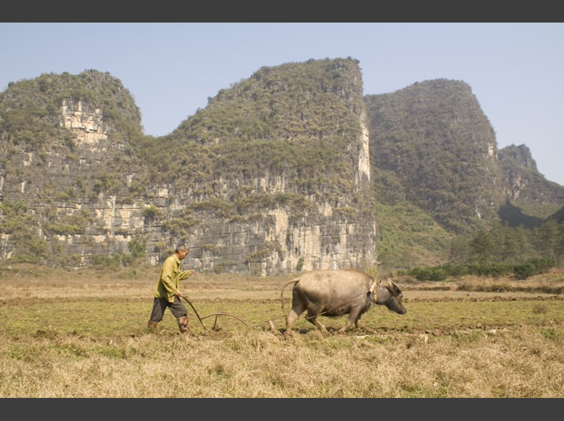 KL-Yangshuo-farmer-ploughing-in-front-of-wine-bottle (jpg)