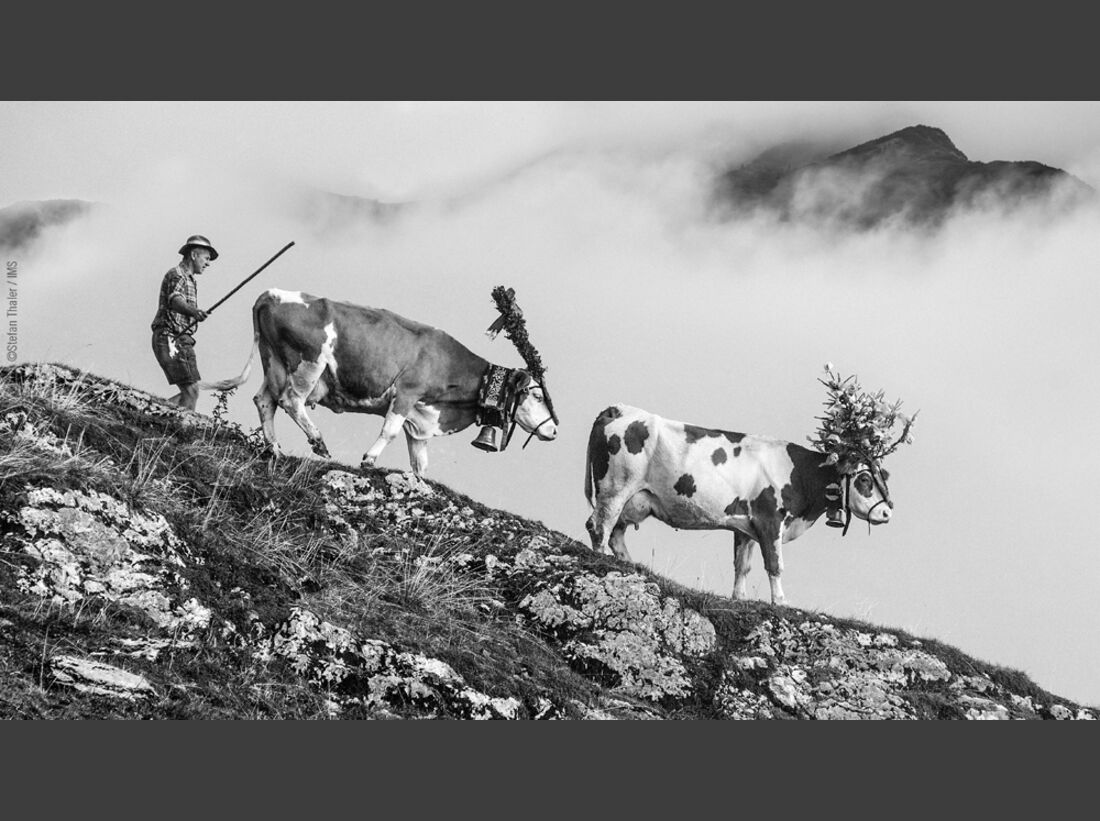kl-ims-top100-bergbilder-stefan-thaler-cat4-14740209241004-2315 (jpg)